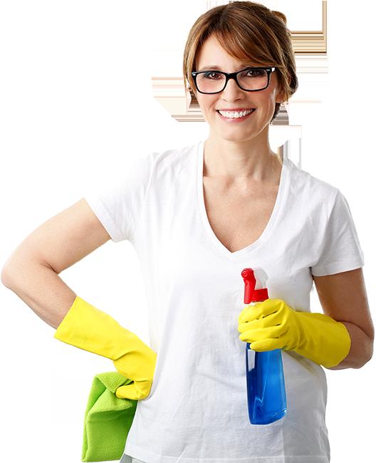 Proxinord (Nord 59) - Services à la personne - Ménage - Repassage